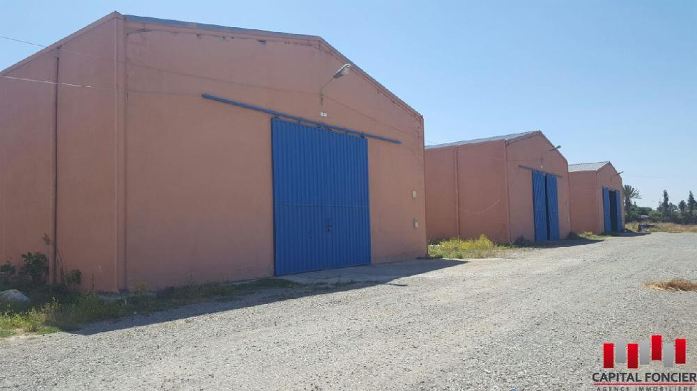 Location Local_industriel 650 m2